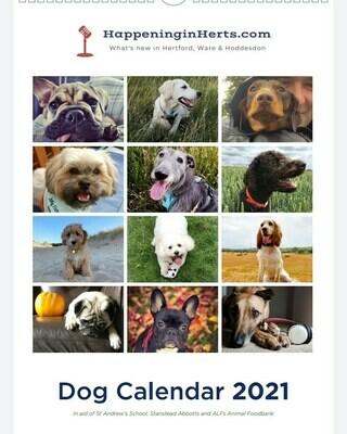 Dog Calendar 2021