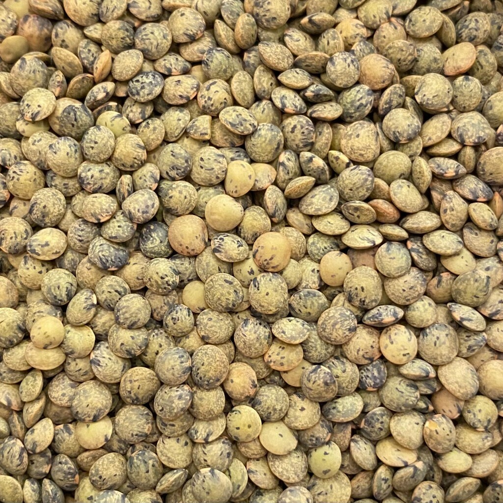Puy lentils from Sugar & Scoop (300g)