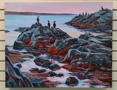 Cormorants, Morning Light, Arisaig