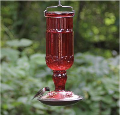 Antique Bottle 10-Ounce Glass Hummingbird Feeder