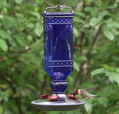 Antique Bottle Hummingbird Feeder, 16 Ounce