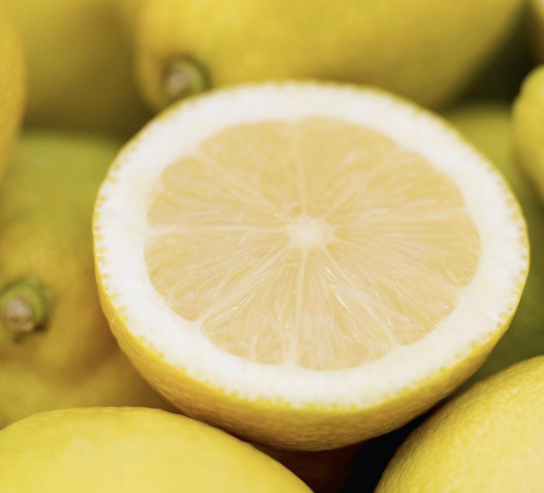 Dwarf Eureka Lemon Tree