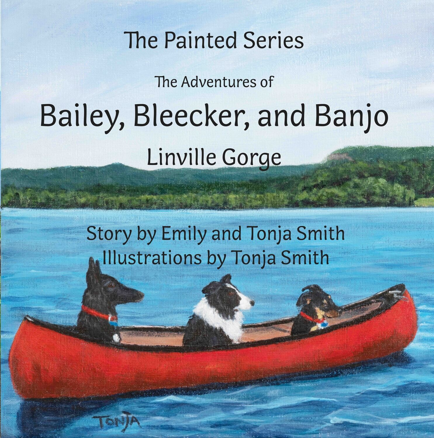 Bailey, Bleecker, and Banjo: Linville Gorge