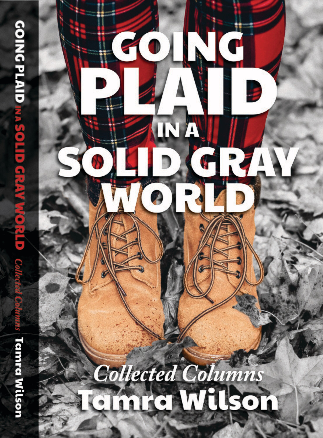Going Plaid in a Solid Gray World