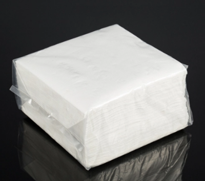 Paper Napkin 2 ply (Soft)