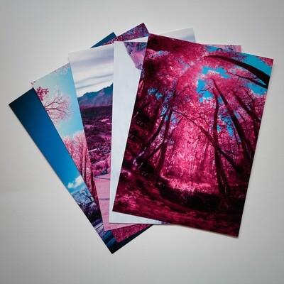 Le Divonne 3 Post Card