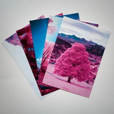 Pack of 5 Post Cards