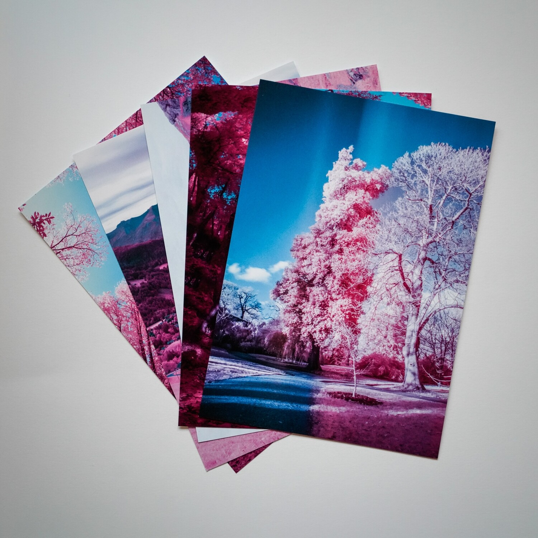 Kew Gardens Post Card