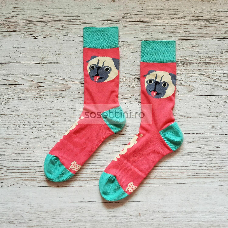 Sosete lungi colorate cu model pug, sosete vesele pug happy socks