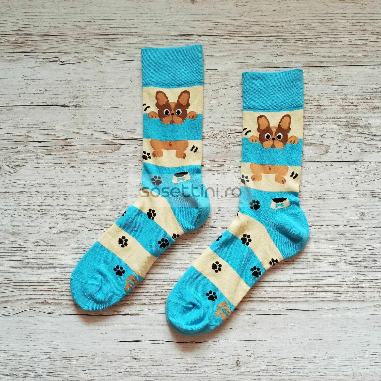 Sosete lungi colorate cu model buldog, sosete vesele buldog happy socks