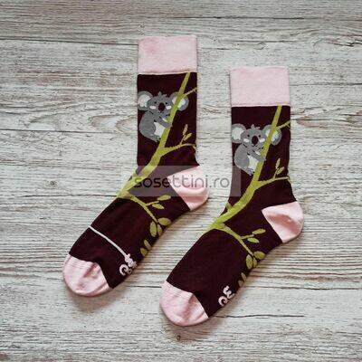 Sosete lungi colorate cu model ursulet koala, sosete vesele ursulet koala happy socks