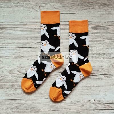 Sosete lungi colorate cu model bufnita, sosete vesele bufnita happy socks