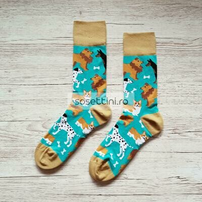 Sosete lungi colorate cu model catelusi, sosete vesele catelusi happy socks