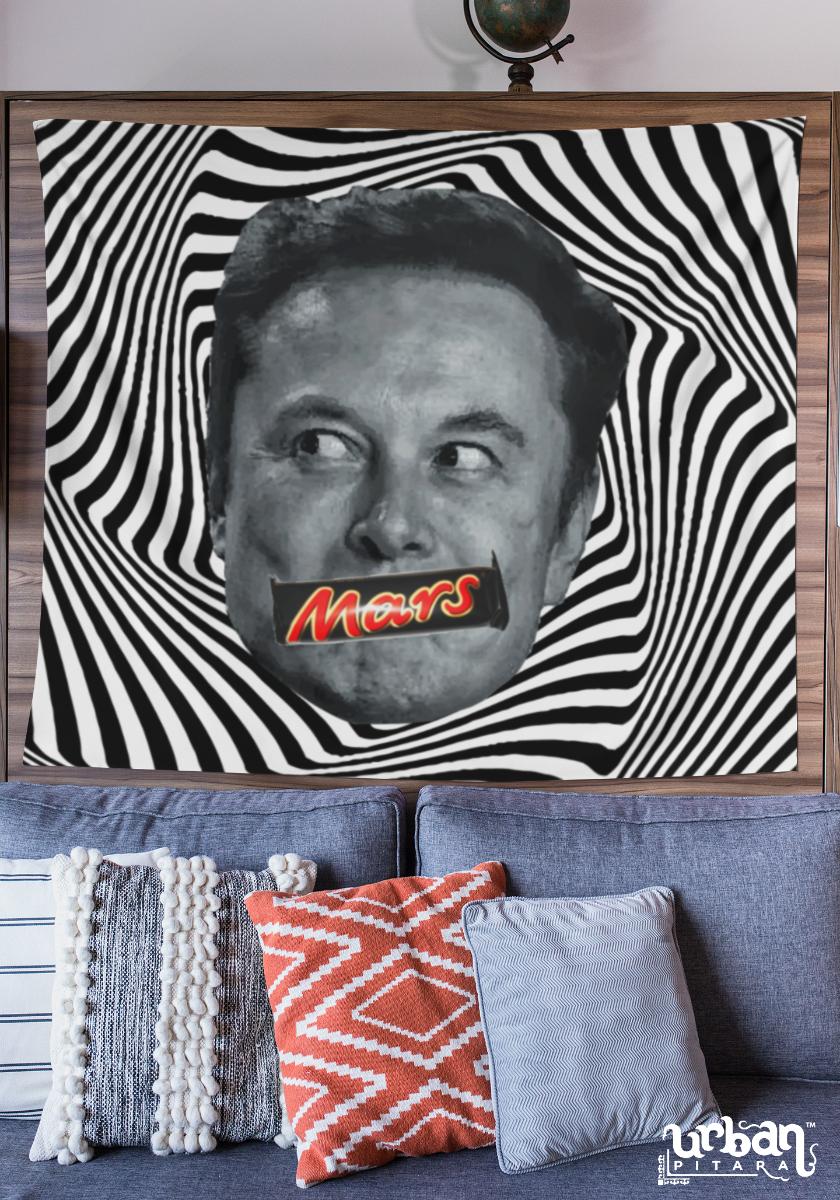 Elon Mars Flag