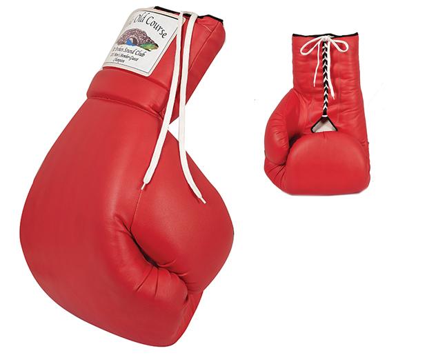 Oversized Boxing Glove