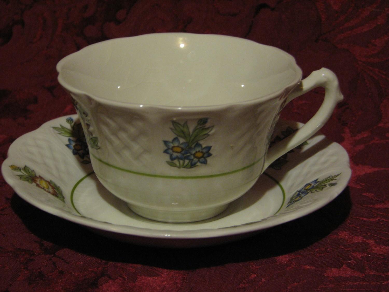 Royal Cauldon, June Garden, Cup & Saucer Bristol Ironstone