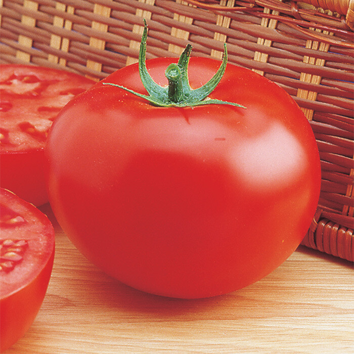 Delicious Tomato
