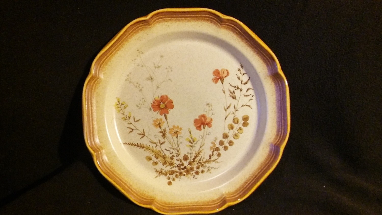"Mikasa Whole Wheat,  Dinner Plate 10 7/8"", Jardiniere Pattern #E8016"