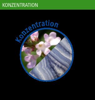 Flower + Stone Konzentration