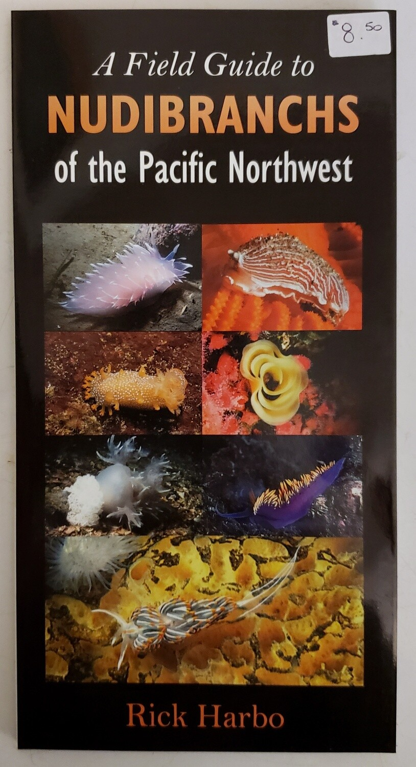 A Field Guide to Nudibranchs of the Pacific Northwest Brochure