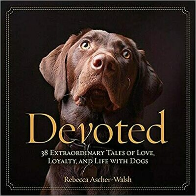 Devoted: 38/Tales of Love -hc