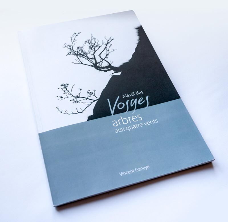 Vosges, arbres aux quatre vents