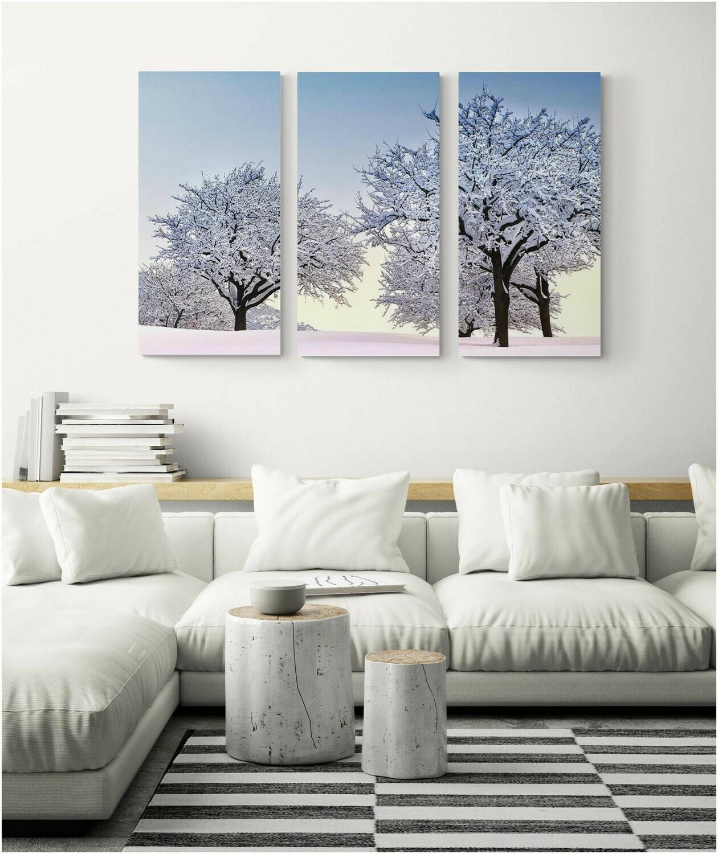 Apple trees at dawn