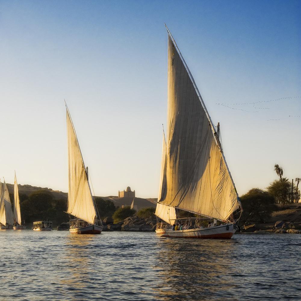 Aswan - feluche - Nilo - Egitto