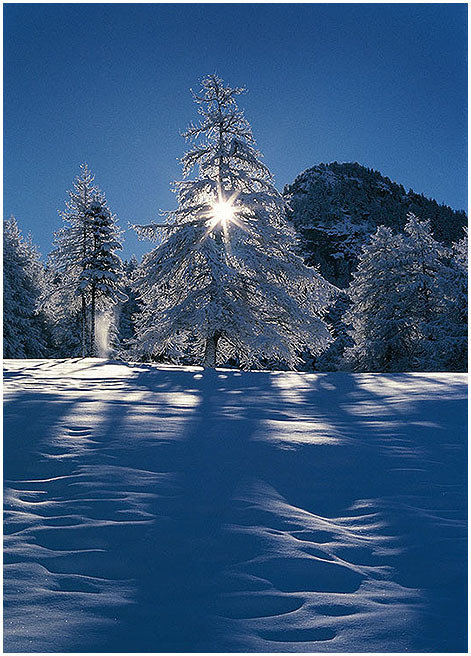Winter Star - Aosta Valley - special metal edition