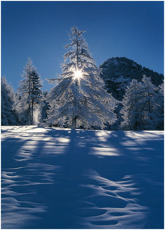 Winter Star - Aosta Valley - su canvas