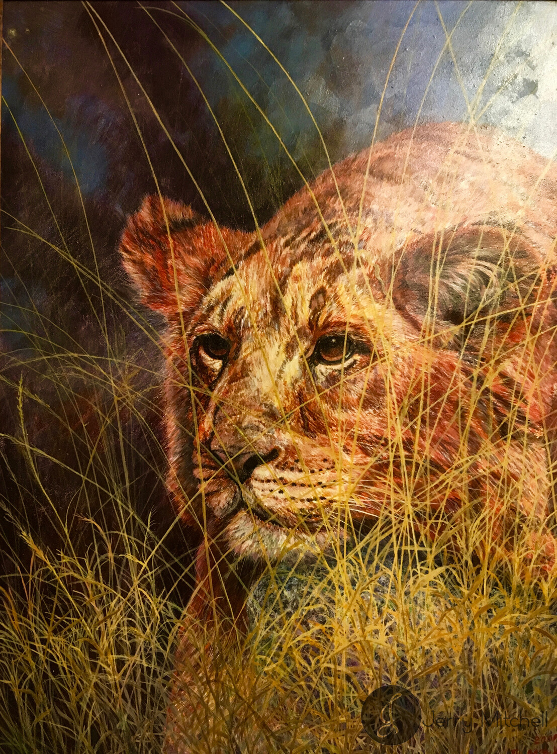 Young  Lion - Oil Painting