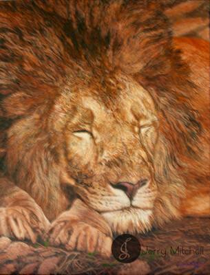 Sleeping Lion King