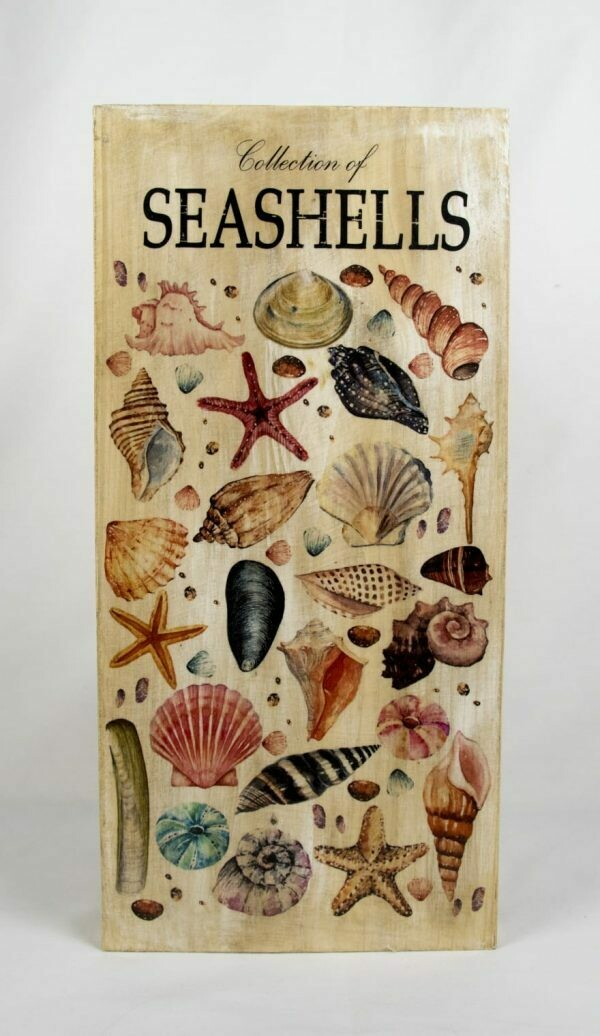 Decoratieplank Seashells
