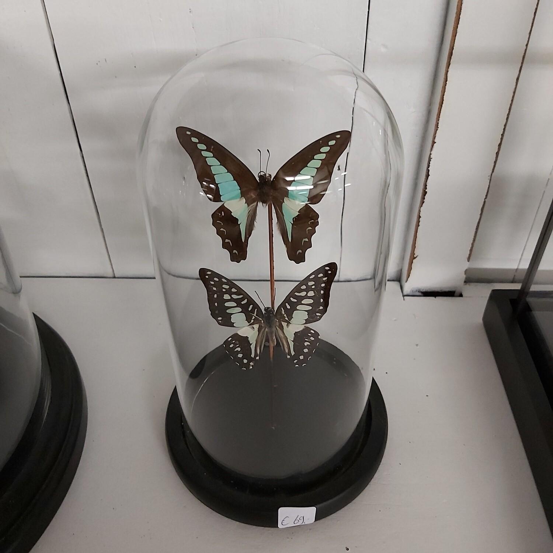 Stolp Small 20 cm vlinder blue