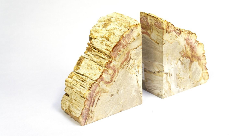 Boekensteunen versteend hout