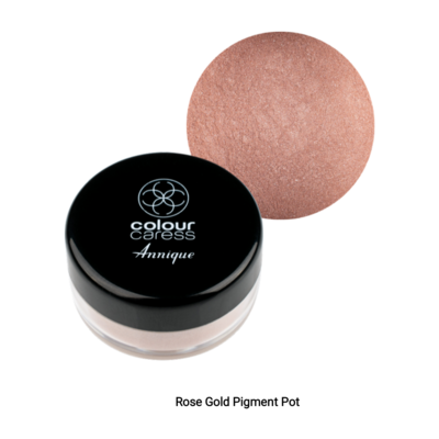 Annique Colour Caress Pigment Pot 3g limited edition (Select Between Champagne, Copper, Vintage or Rose Gold)