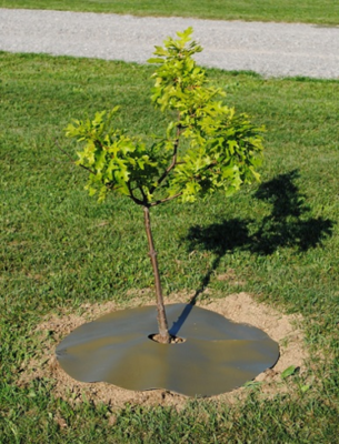 "12"" Tree Rings for Landscaping-SET OF 5 RINGS"
