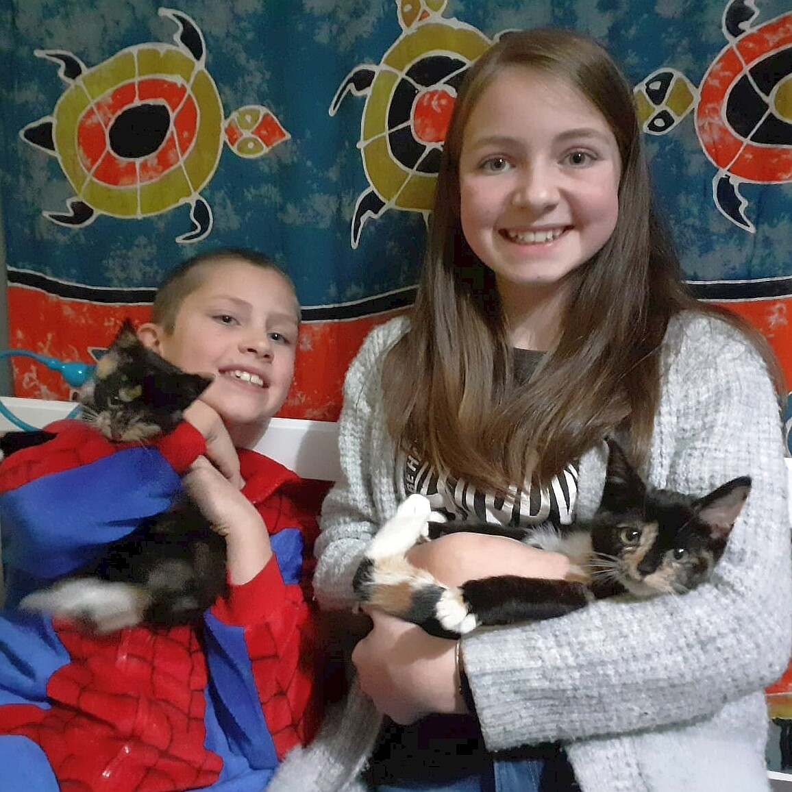 Sponsor a foster place for a year