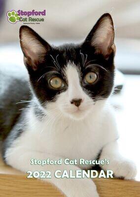 Stopford Cats 2022 Calendar