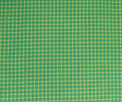 Spring Green Check