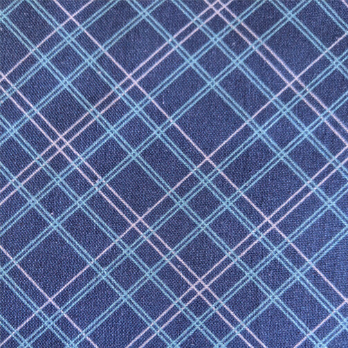 Blue Spring Plaid