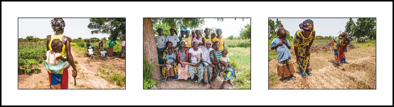 Three pictures 1 - Women Agriculture Africa