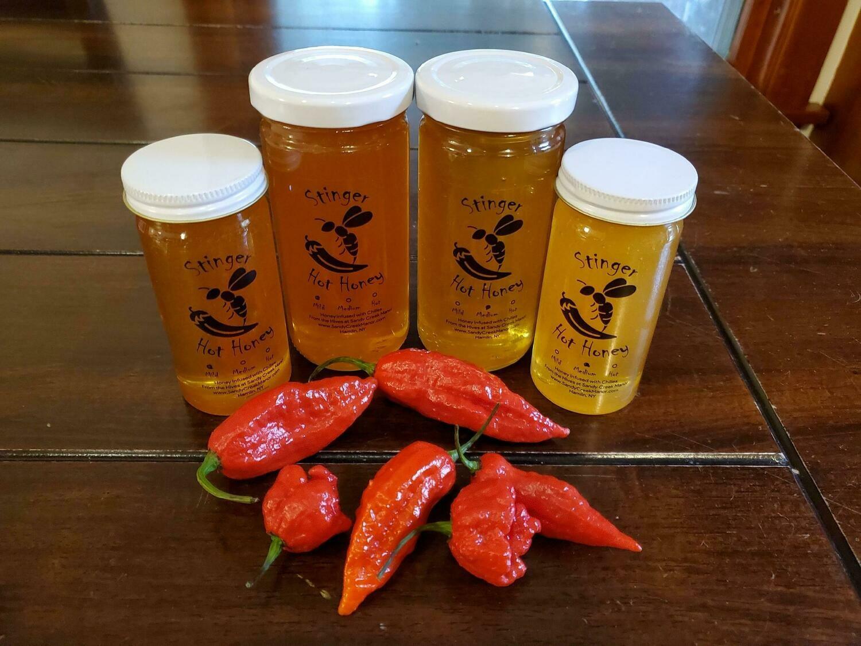 Stinger Hot Honey - Hot, 12 oz