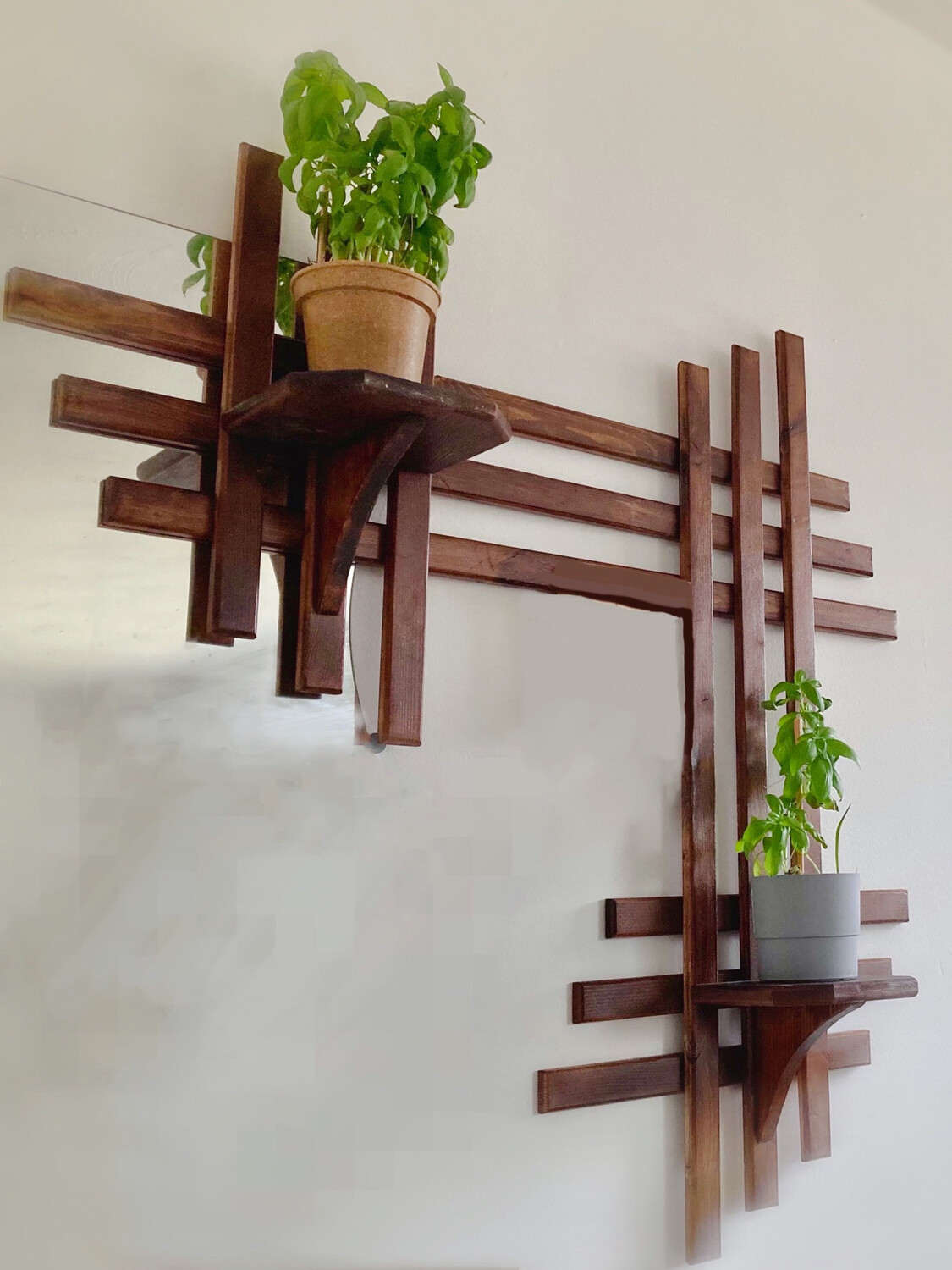 Asymmetrical Wall Shelf With Stands For Plants/display
