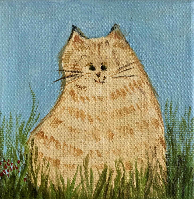 Yellow Cat 6