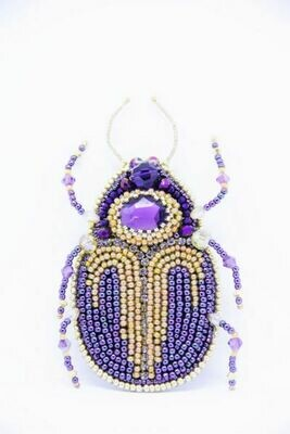 """The """"Treasure Hunt Beetle"""""""
