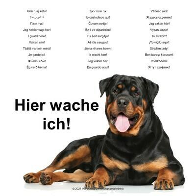 Schild Rottweiler - Hier wache ich! - in 31 Sprachen