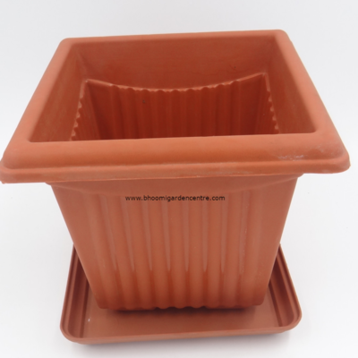 Square Terracotta  plastic pot with the plate (6 inch)