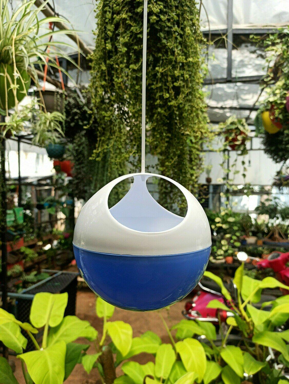 Avant ORB hanging pot (multiple colors)