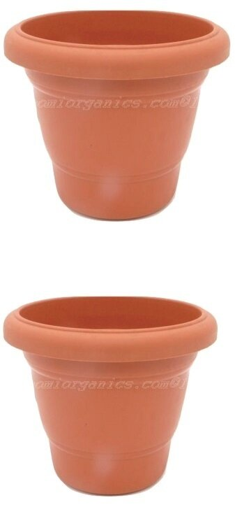 Regular Terraccotta plastic pot  (8 inch) (set of 2)